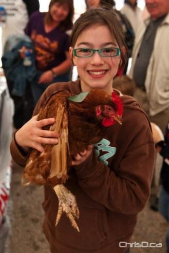 Springfield Chicken Daze