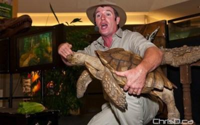 Safari Jeff's Reptile Show Returning to Kildonan Place