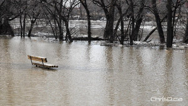 A bench sits partly submerged underneath flood water on Lyndale Drive Thursday. (STAN MILOSEVIC / MANITOBAPHOTOS.COM)
