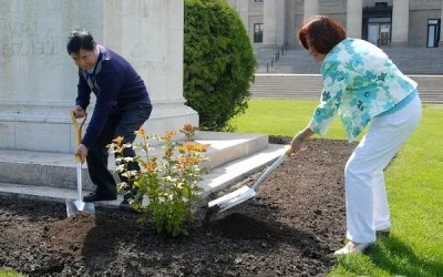 Shrubs Planted in Queen's Honour
