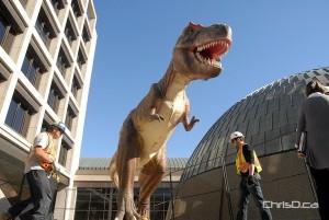 Manitoba Museum Dinosaur