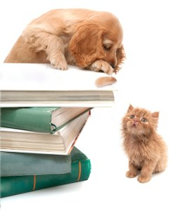Books - Animals - Cat - Dog
