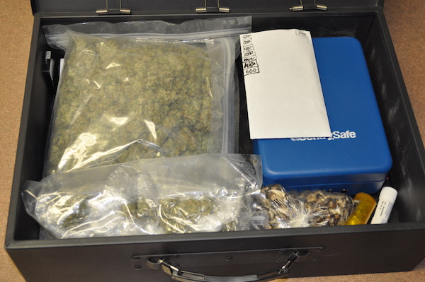 Gimli Marijuana Seizure