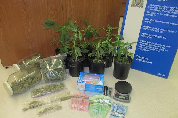 Treherne Drug Seizure