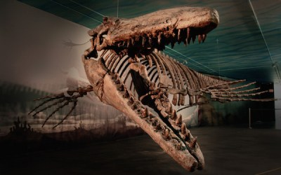 Manitoba's 'Signature' Museums Sharing in $166K