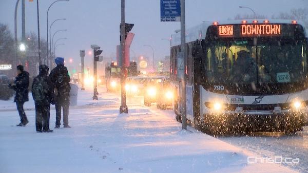 Winnipeg Snow - Bus