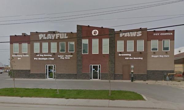 Playful Paws Pet Centre