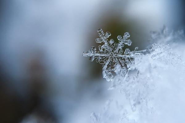 Winter Snowflake