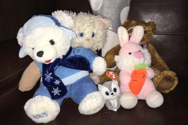 Lost Teddy Bears