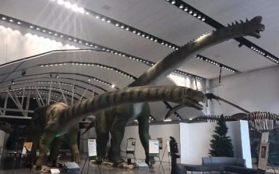 Manitoba Museum Receives Imagine Canada Accreditation