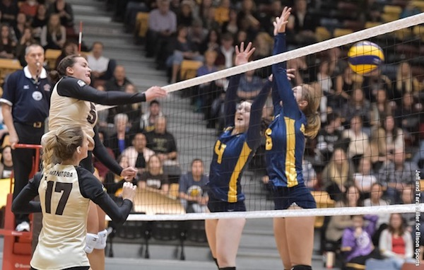 U of M Bisons Volleyball