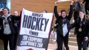 Manitoba Bisons Champions