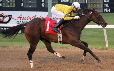 Fillies and Mares Back in the Spotlight This Week