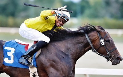 Duncan's Fillies Are the Stars of the Week at Assiniboia Downs