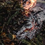 Manitoba Orders Cottagers to Evacuate Due to Advancing Ontario Wildfire