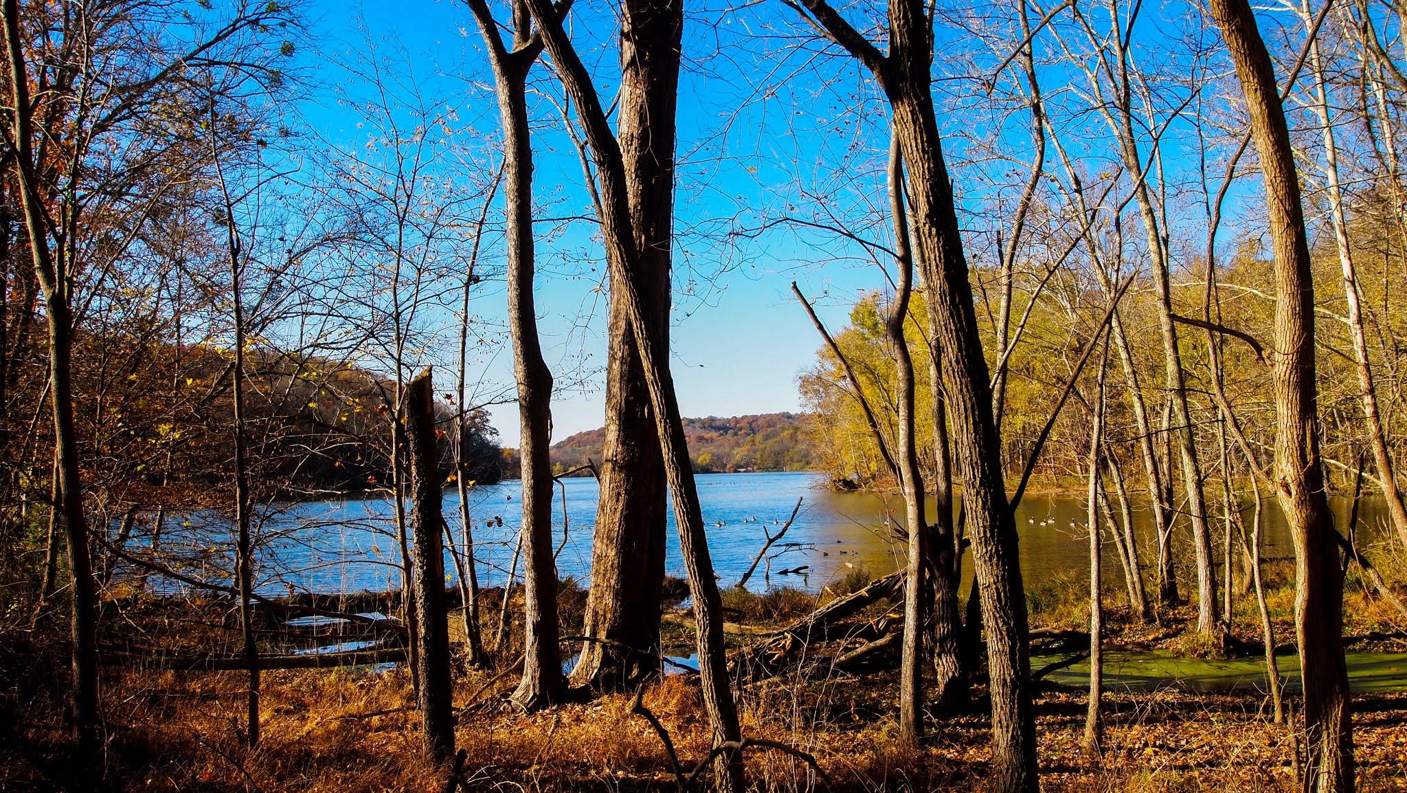 Radnor Lake Nashville Nature Photos