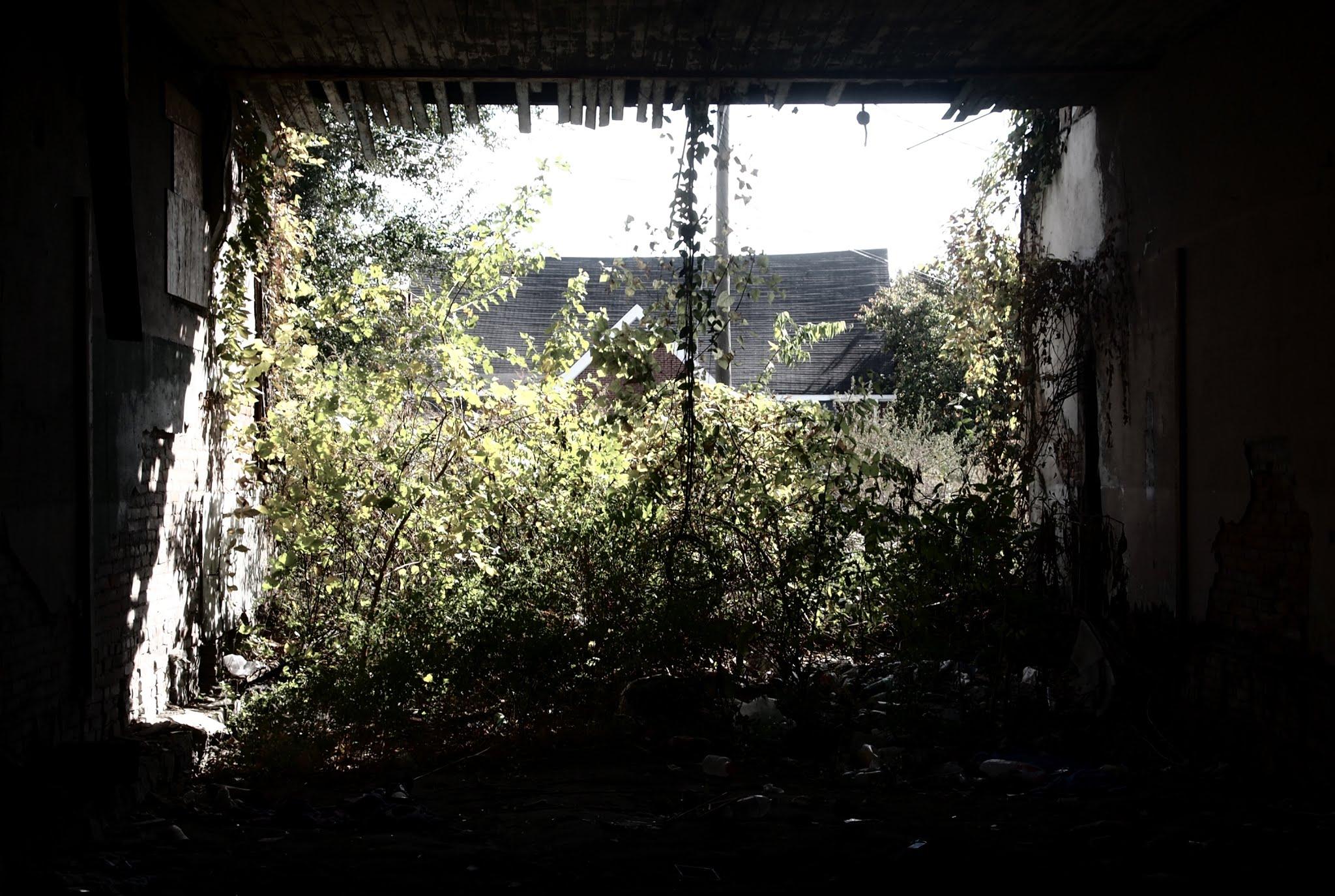 Desolate Building
