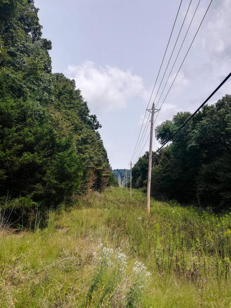 Monte Sano Nature Preserve Watts Trail