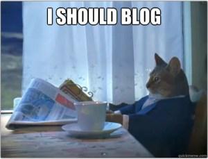 The One Percent Cat - i should blog