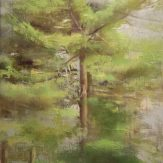 Christopher Gallego, Pines, Spring, 2008, Oil painting on canvas, 12 x 9 in.
