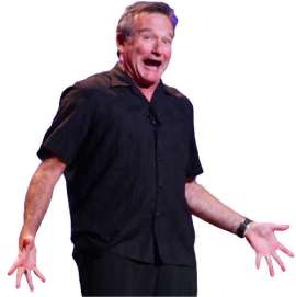 How to Handle Rejection as an Artist-Blog Post by Christopher Gallego-Image-Robin Williams