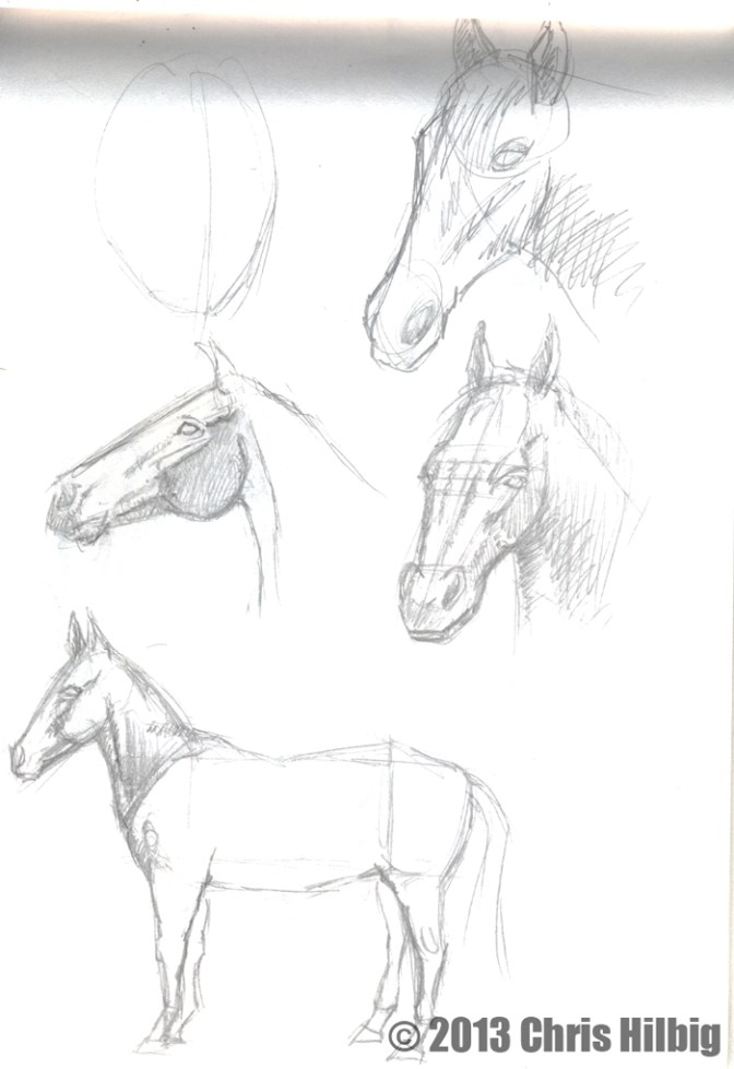 Horse study from sketch pad