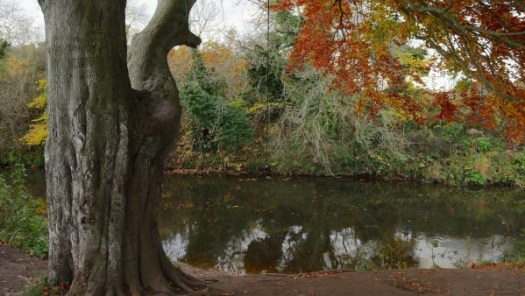 River_Esk