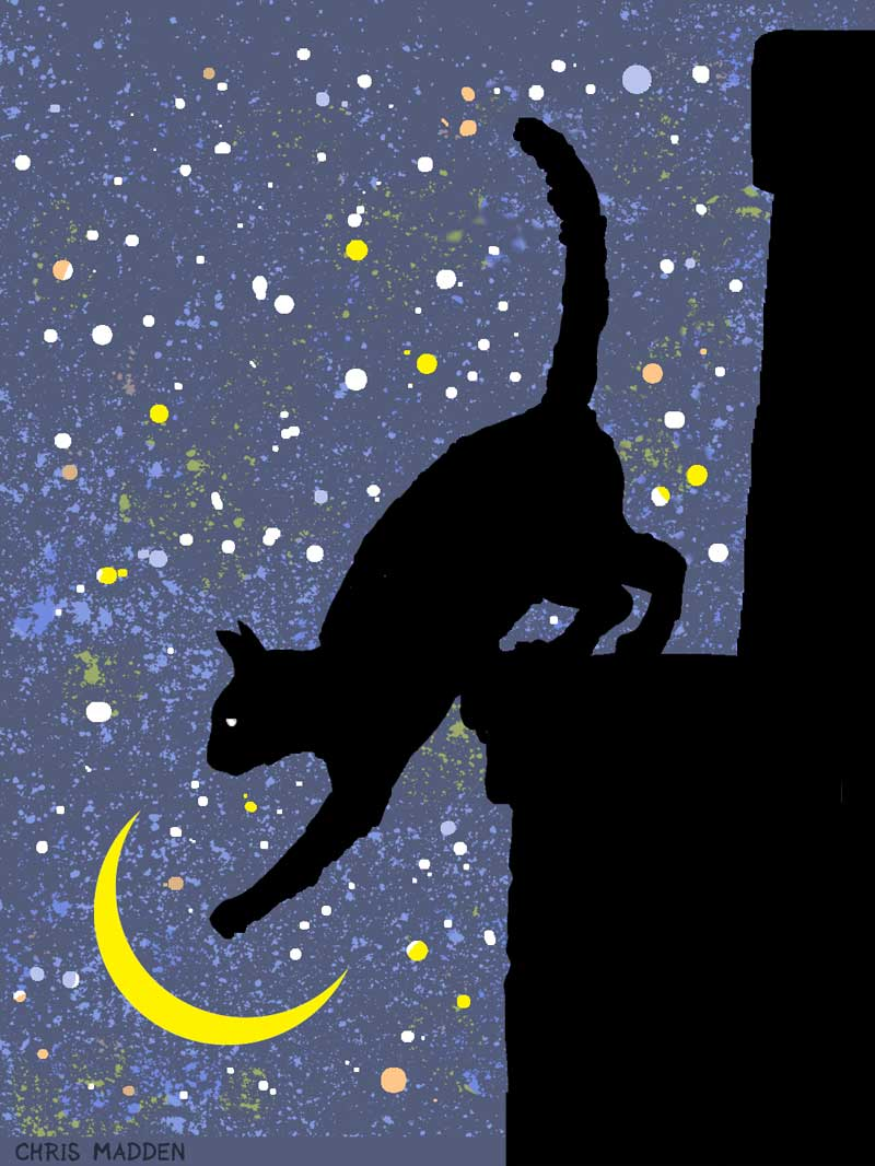 cat and moon print art