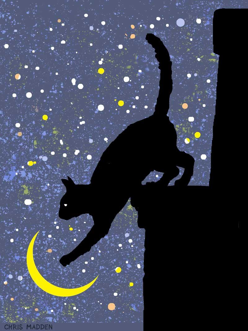 cat and moon print art