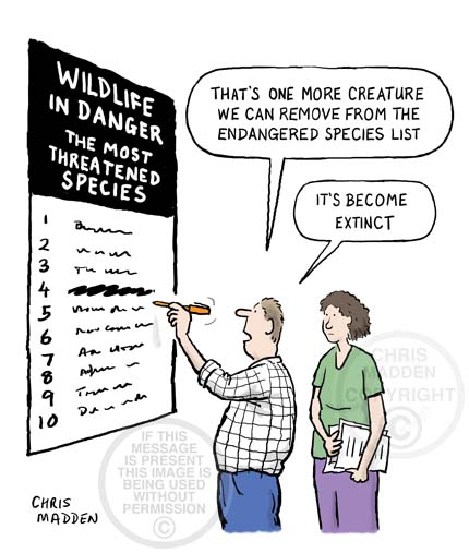 Image result for extinct species cartoon