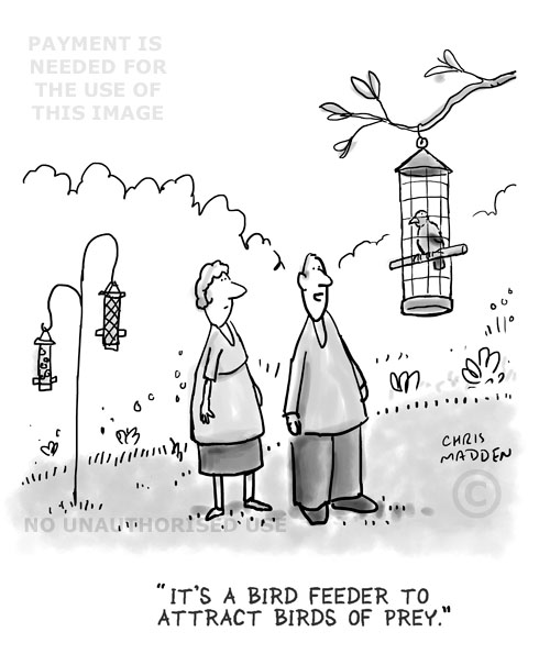 Bird feeder cartoon for predators