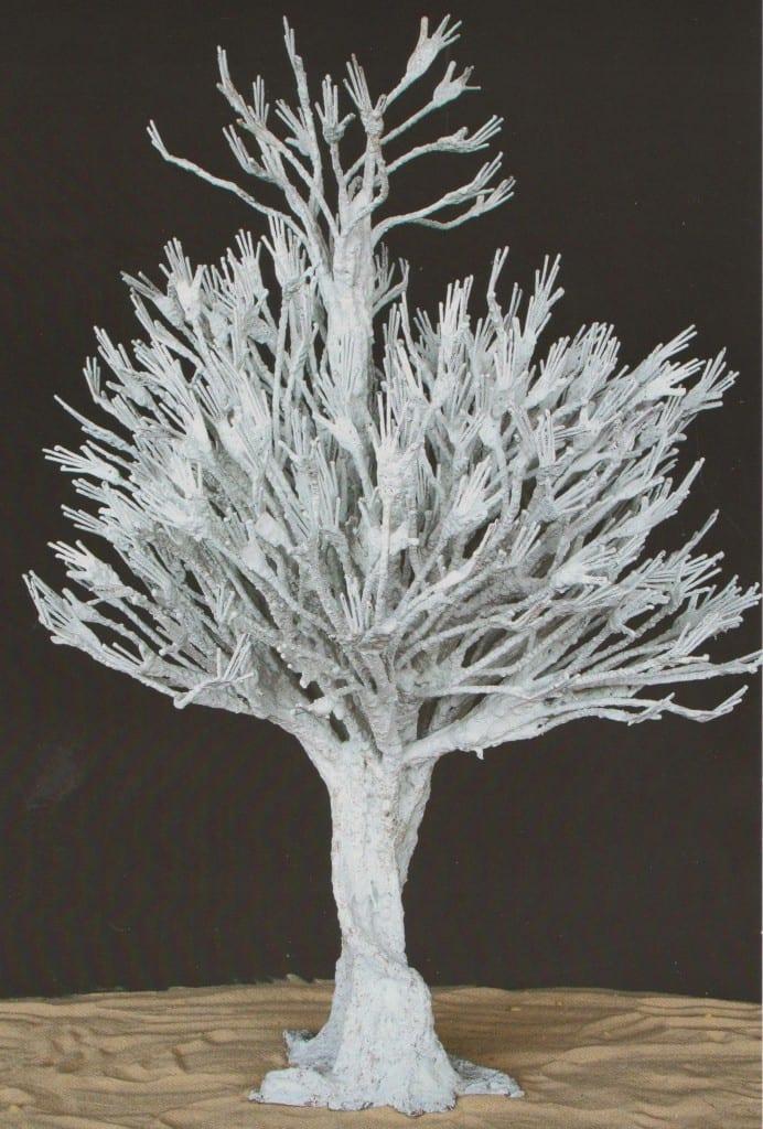 NDARY Lo  arbre des origines