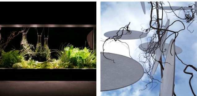 Jade Design - un univers végétal et poétique