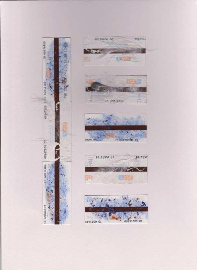 planche-bleu-blanc-plume