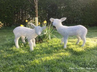 Spring Lambs by chris moss wire sculptor in yorkshire