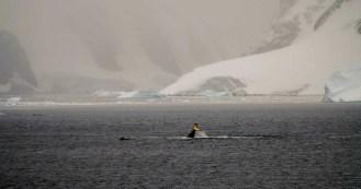 2015.03.25 Antarctica (5)