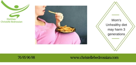 best dietitian lebanon, lebanon, diet, diet clinic, protein diet, diet lebanon, lose weight lebanon, unhealthy diet,food