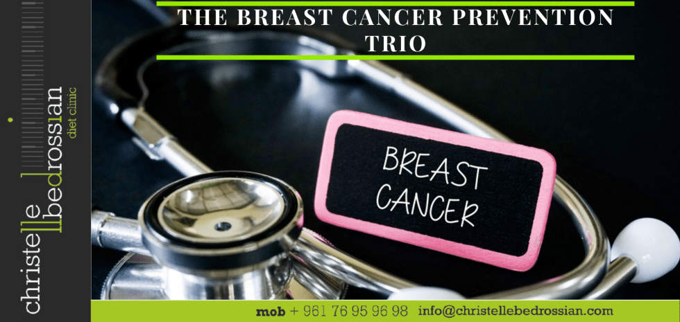 best dietitian, lebanon, diet lebanon, diet, diet tips, diet advice, nutrition, breast cancer, breast cancer prevention