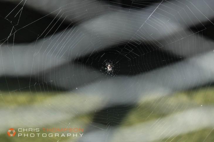 spokane-photographers-chris-thompson-33