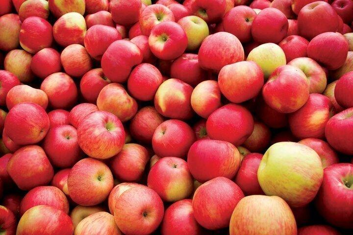 Image result for يحتوى التفاح على السيانيد
