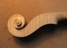 Geigenschnecke, Ahorn/ violin scroll, maple