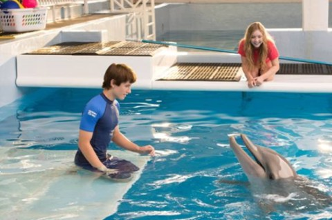 dolphin tail 2 home school
