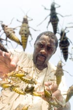 Idris Elba as Ben; very large bugs as themselves