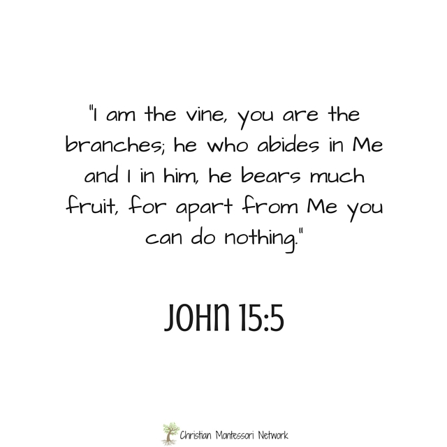 Image result for John 15:5