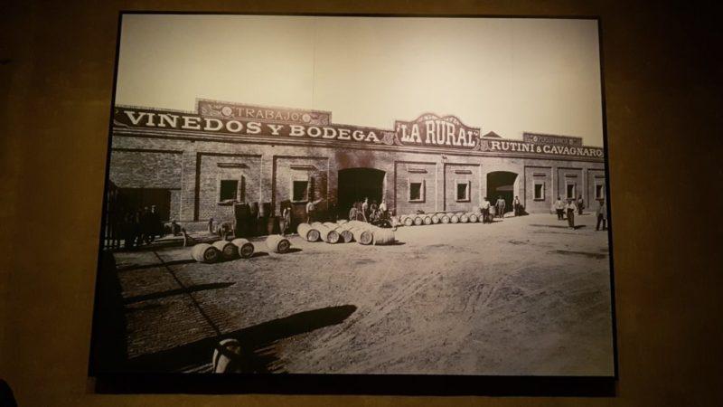 Mendoza – il vino e le cantine, giorno 6