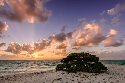 Sunrise at Shark Bay, Heron Island, Australia
