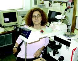 Paediatric Pathologist Irene Scheimberg's brilliance should lead to a major rethink on juvenile fractures.