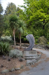New Zealand Palm tree
