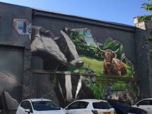 Edinburgh Street Art 2