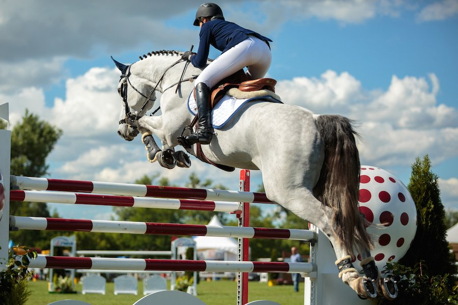 It is crucial for riders to be skilled in judging distance and pace, as they are responsible for timing their horses' jumps.